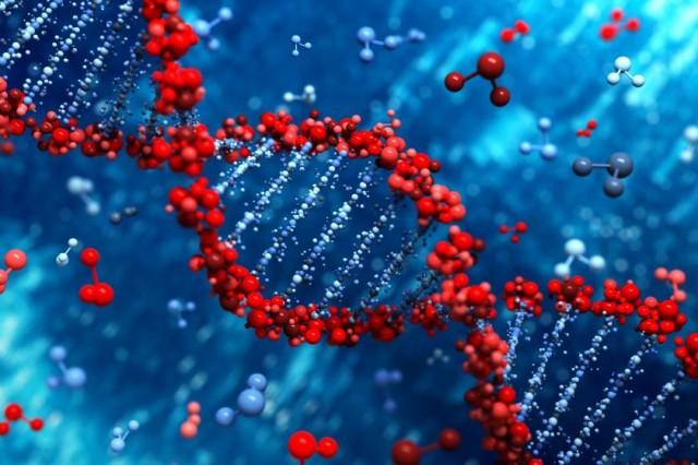 22 факта о ДНК, которые помогут вам лучше понять себя