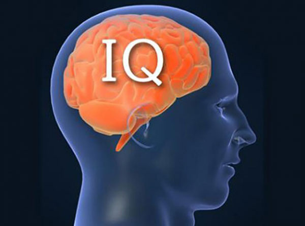 Как повысить уровень IQ