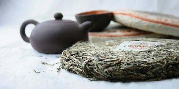Самый древний в мире чай обнаружен в императорской гробнице
