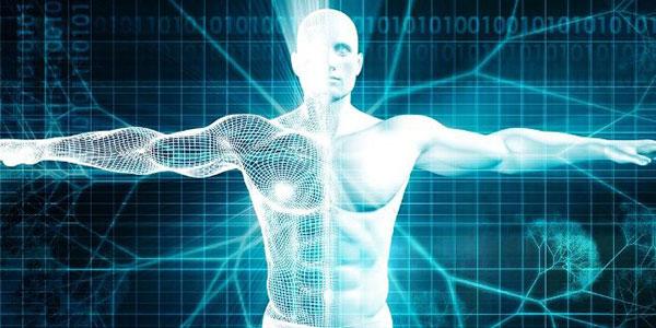 Человечество достигло пика продолжительности жизни и физических возможностей