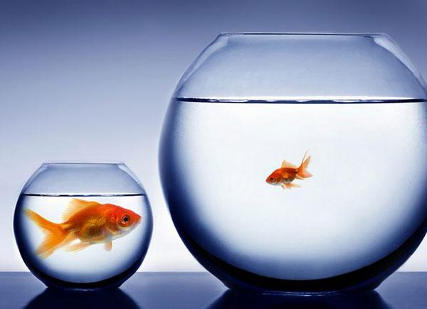 10 вещей, которые стоит помнить, когда вы сравниваете себя с другими