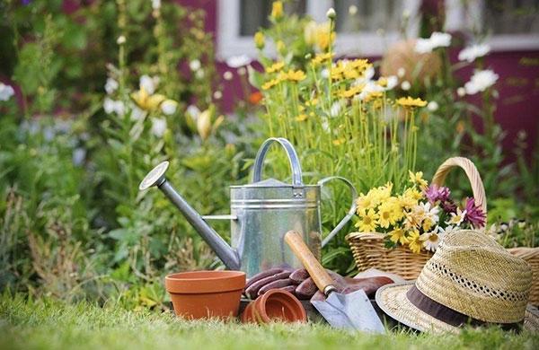 Весна! Советы садоводам и огородникам