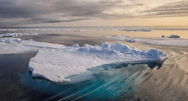 Северный Ледовитый океан: особенности и факты